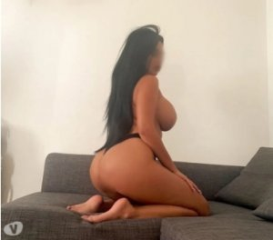 Gulcan big booty escort girl Wilmot